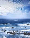Mer sauvage Photo libre de droits