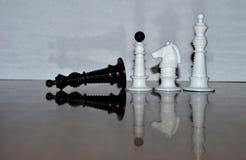 Mer schackstycken Royaltyfri Foto