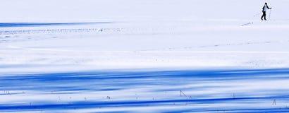 mer skiier Arkivbild