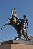 Mer tamer av hästar i St Petersburg Arkivbild