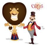 Mer tamer cirkus och posera för lejon Arkivfoton