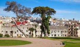 mer tangier morocco Gatasikt med gamla träd royaltyfria foton