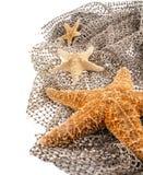 Mer trois les étoiles de différentes tailles Images libres de droits