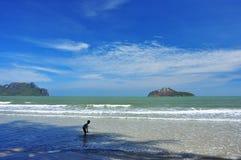 Mer verte avec le ciel bleu Photographie stock libre de droits