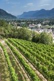 Merano στη μέση των βουνών και των plantages μήλων Στοκ Εικόνες