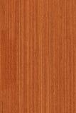 Meranti (textura de madera) Imagenes de archivo