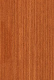 Meranti (wood texture) Stock Images