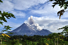 Merapi Errupted Royalty Free Stock Images