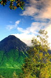 Merapi wulkan Obraz Stock