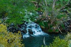 Meraviglia alle meraviglie naturali di Sedona Arizona U.S.A. Fotografia Stock Libera da Diritti