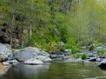 Meraviglia alle meraviglie naturali di Sedona Arizona U.S.A. Immagine Stock Libera da Diritti