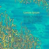 Meraviglia-erba subacquea sul fondo dell'acquerello Fotografia Stock