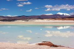 Meraviglie del paesaggio panoramico dell'Atacama con gli appartamenti del sale, il lago e le montagne vulcaniche sull'orizzonte n Immagine Stock Libera da Diritti