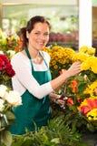 Mercado alegre do florista da mulher que escolhe o trabalho Fotografia de Stock
