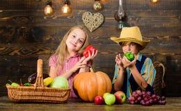 Mercado da exploração agrícola Cultivar ensina a crianças de aonde seu alimento vem Os vegetais do menino da menina dos fazendeir imagem de stock
