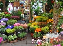 Mercado da flor Imagens de Stock Royalty Free