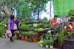 Mercado da flor de Taipei Fotos de Stock Royalty Free