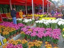 Mercado da flor do festival de mola 2012 em Nanhai Fotografia de Stock Royalty Free