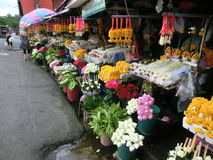 Mercado da flor em Chiang Mai, Tailândia Foto de Stock Royalty Free
