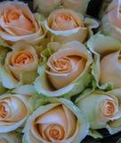 Mercado da flor da rua Grupos dos ramalhetes das rosas da venda do pinkor fgently imagens de stock