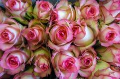 Mercado da flor da rua Grupos dos ramalhetes das rosas da venda do pinkor fgently imagem de stock royalty free