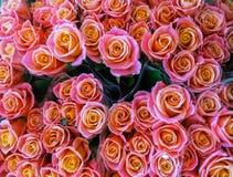 Mercado da flor da rua Grupos dos ramalhetes de rosas coloridas para a venda fotografia de stock royalty free