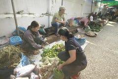 Mercado da manhã em Laos vegetal fotografia de stock