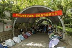 Mercado da união em Shanghai, China Fotografia de Stock Royalty Free