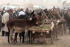 Mercado de domingo en Kashgar Fotos de archivo libres de regalías