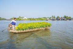 Mercado de flutuação em estradas transversaas das sete-maneiras (baía de Nga), Hau Giang de Phung Hiep Imagens de Stock