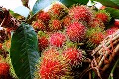Mercado de fruto do Rambutan em Tailândia imagens de stock royalty free