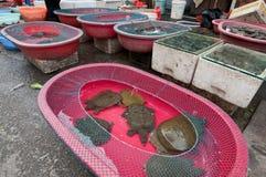 Mercado de la comida en Shangai foto de archivo libre de regalías