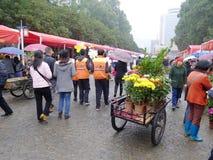 Mercado de la flor del festival de resorte 2012 en Nanhai Imagenes de archivo