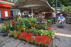 Mercado de la flor en Cours Saleya en Niza Fotografía de archivo