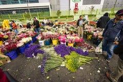 Mercado de la flor en Paloquemao Bogotá Colombia Fotos de archivo libres de regalías