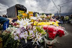 Mercado de la fruta y verdura, Paloquemao, Bogotá Colombia Imágenes de archivo libres de regalías