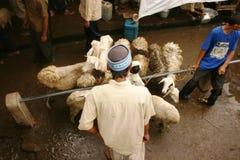 Mercado de las cabras y de las ovejas Foto de archivo libre de regalías