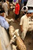 Mercado de las cabras y de las ovejas Imagen de archivo libre de regalías