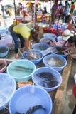 Mercado de los mariscos, isla de Weizhou, China Fotos de archivo libres de regalías