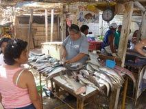 Mercado de peixes. imagens de stock