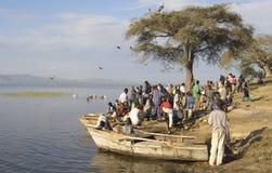 Mercado de peixes de Awasa Fotografia de Stock Royalty Free