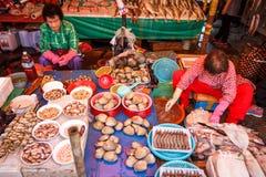 Mercado de peixes de Jagalchi, Busan, Coreia fotos de stock royalty free