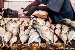 Mercado de peixes de pedra da cidade Imagens de Stock