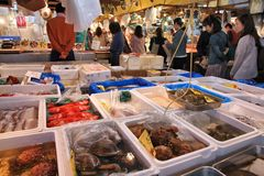 Mercado de peixes de tokyo Fotos de Stock Royalty Free