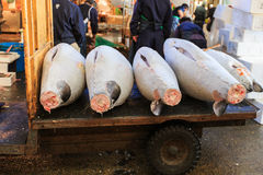Mercado de peixes de Tsukiji Foto de Stock Royalty Free