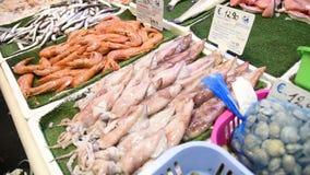 Mercado de peixes diário em Roma vídeos de arquivo