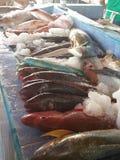 Mercado de peixes em Hong Kong Foto de Stock