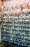 Mercado de peixes em Hong Kong, China Imagens de Stock Royalty Free