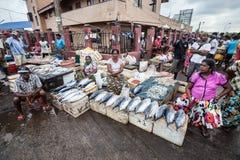 Mercado de peixes em Hong Kong Negombo, Sri Lanka imagens de stock royalty free