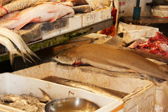 Mercado de peixes em Singapura fotos de stock royalty free